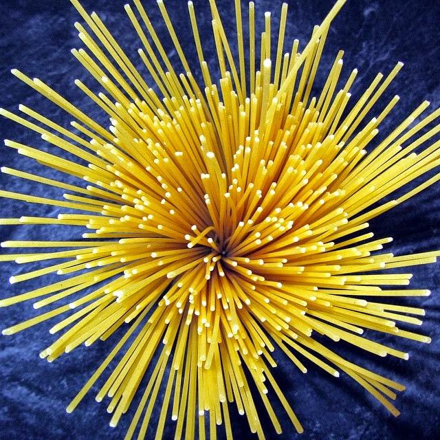 Spaghetti Structures
