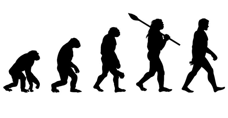 POSTPONED! How to answer those tricky qs on Evolution?